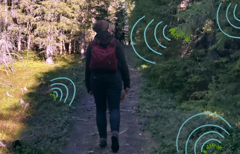 3Woods Audiowalk er en unik lydopplevelse i Folkeparken under Festspillene i Nord-Norge 2021.